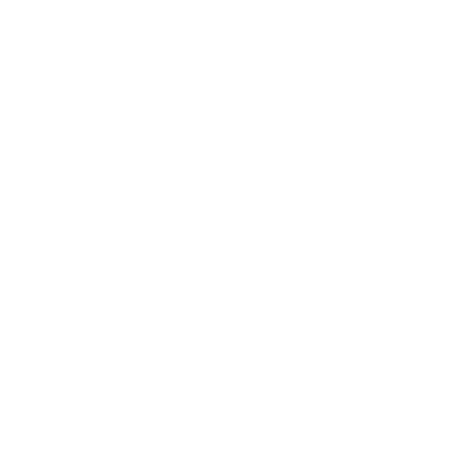 EMV Chip And Pin